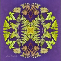 purple_fern_mandala_copy