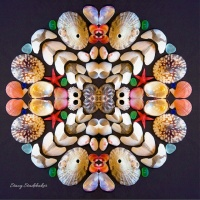 stacy_photo_mandala